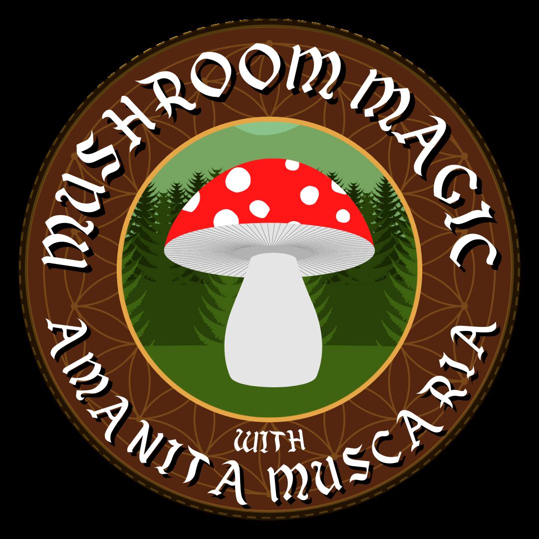 mushroom magic with amanita muscaria